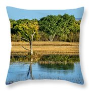 Bosque Del Apache - New Mexico Throw Pillow