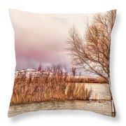 Bosque Winter II Throw Pillow