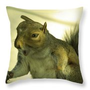 Bossy Squirrel Throw Pillow