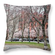 Boston Back Bay In Spring Throw Pillow