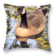 Boston Public Garden Goose Throw Pillow
