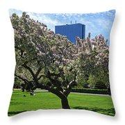 Boston Public Garden Spring Tree Boston Ma Throw Pillow