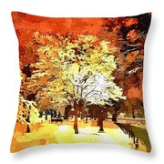 Boston Winter Throw Pillow