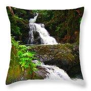 Botanic Gardens Waterfall Throw Pillow