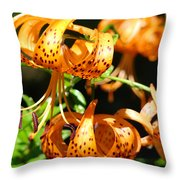 Botanical Art Prints Orange Tiger Lilies Master Gardener Baslee Troutman Throw Pillow