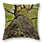 Botanical Behemoth Throw Pillow