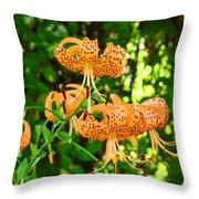 Botanical Master Gardens Art Prints Orange Tiger Lilies Baslee Troutman Throw Pillow