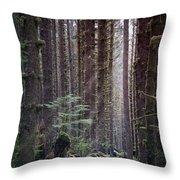 Botanical Reincarnation Throw Pillow