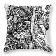 Botanical Series Throw Pillow