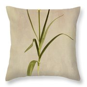 Botanical Tulip 2 Throw Pillow
