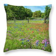 Botanical Variety Show In The Texas Hill Country Throw Pillow