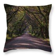 Botany Bay Road Throw Pillow