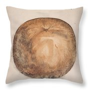 Botany: Mammee, 1585 Throw Pillow