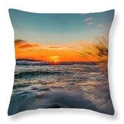 Botany Sunset Splash Throw Pillow