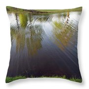 Grass On Both Sides With Water Between Throw Pillow