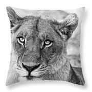 Botswana  Lioness In Black And White Throw Pillow