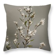 Botswana Wildflower  Throw Pillow