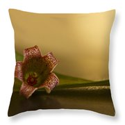 Bottle Tree Flower Throw Pillow