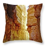 Bottom Of Wall Street On Navajo Trail In  Bryce Canyon National Park, Utah  Throw Pillow