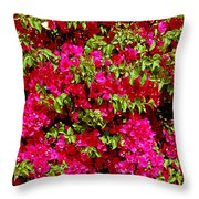 Bougainvillea And Foliage Throw Pillow