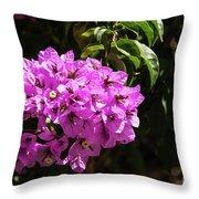 Bougainvillea Bloom Throw Pillow