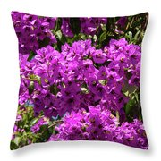 Bougainvillea Blooms Throw Pillow