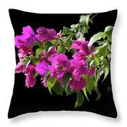Bougainvillea Cutout Throw Pillow