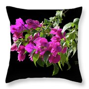 Bougainvillea Cutout Throw Pillow