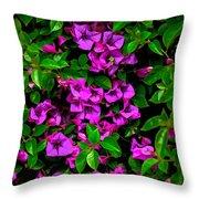 Bougainvillea Floral Print Throw Pillow