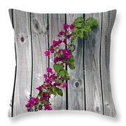Bougainvillea Glabra Throw Pillow