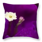 Bougainvillea Spectabilis Macro Throw Pillow