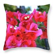 Bougainvillea Square Throw Pillow