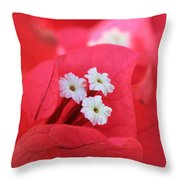 Bougainvilleas And White Throw Pillow