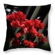 Bougainvilleas Throw Pillow