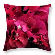 Bougainvillia Throw Pillow