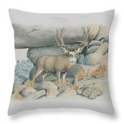 Boulder Buck  Throw Pillow