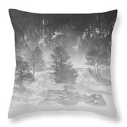 Boulder Canyon And Nederland Winter Landscape Throw Pillow