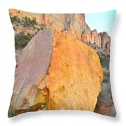 Boulder Color  Throw Pillow