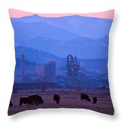 Boulder County Industry Meets Country Throw Pillow