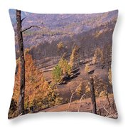 Boulder County Wildfire 5 Miles West Of Downtown Boulder Throw Pillow