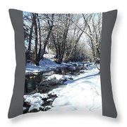 Boulder Creek After A Snowstorm Throw Pillow