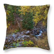 Boulder Creek Autumn View  Throw Pillow