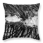 Boulder Creek Throw Pillow