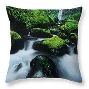 Boulder Elowah Falls Columbia River Gorge Nsa Oregon Throw Pillow
