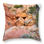 Boulder-notom Color Throw Pillow
