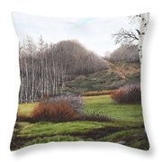 Boulder Pass Throw Pillow