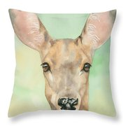 Bound For Glory Throw Pillow