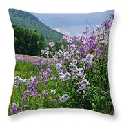 Boundary Of Beauty Throw Pillow