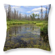 Boundary Waters Beauty Throw Pillow