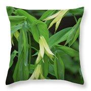 Bountiful Bellwort Throw Pillow